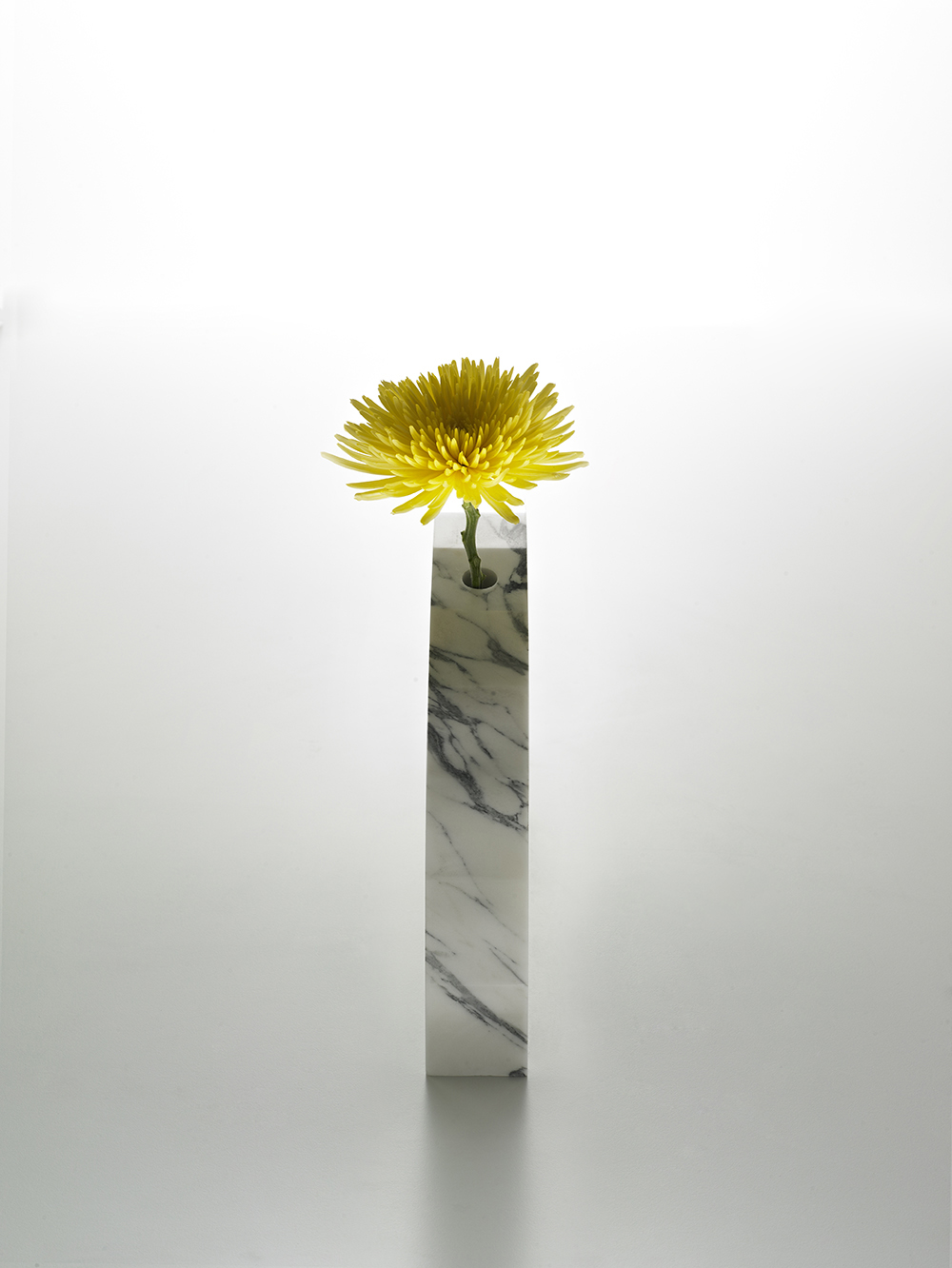 Brooksbank & Collins_Caulis_Arabascatta Marble_6